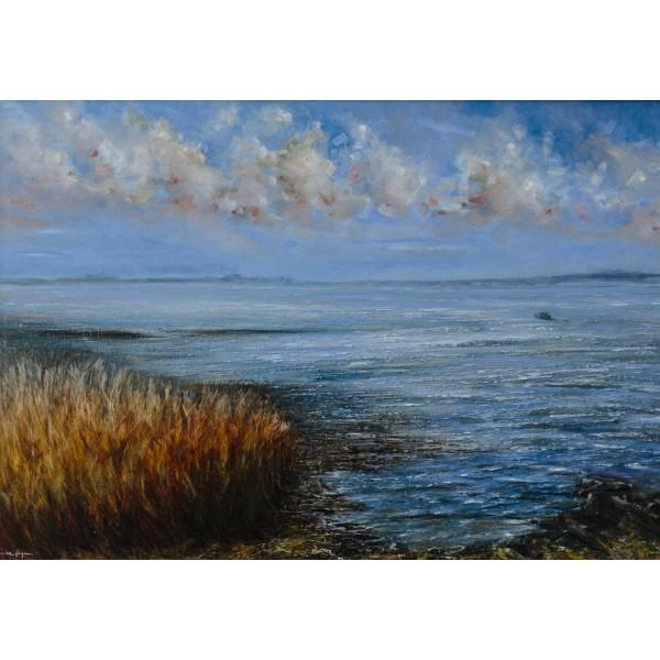 Burrow Rosslare Strand